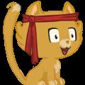 avatar for ashwinvis