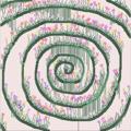 avatar for lichen