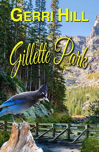 Gillette Park (2020, Bella Books)
