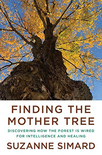Finding the Mother Tree (2021, Knopf)