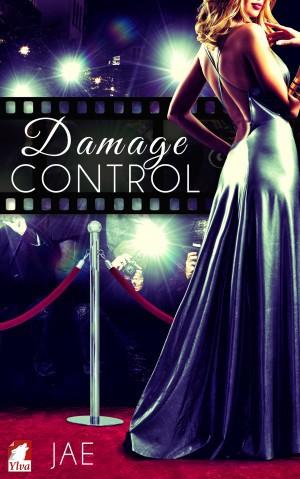 Damage Control (2015, Ylva Publishing)